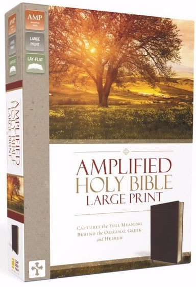 Image of Amplified Large Print Holy Bible: Burgundy, Bonded Leather, Thinline other