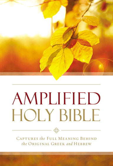 Image of Amplified Outreach Bible, Paperback,God's Promises and Perspectives from the Bible, Double-Column Format other