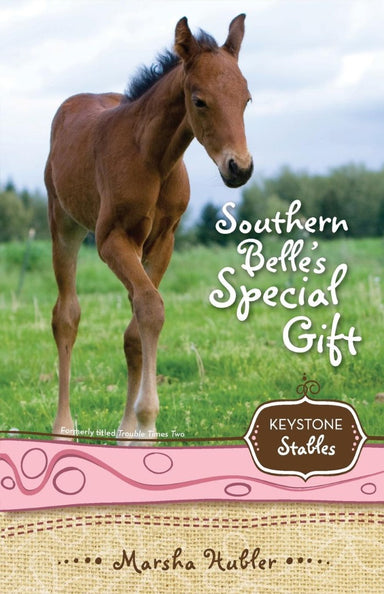 Image of Southern Belle's Special Gift other