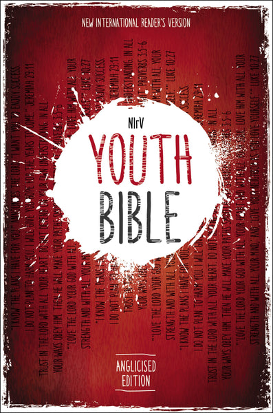 Image of NIRV Youth Bible other