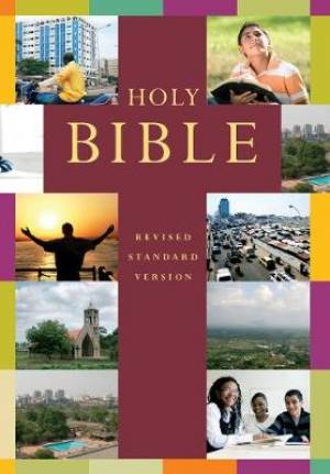 Image of RSV Popular Illustrated Holy Bible other