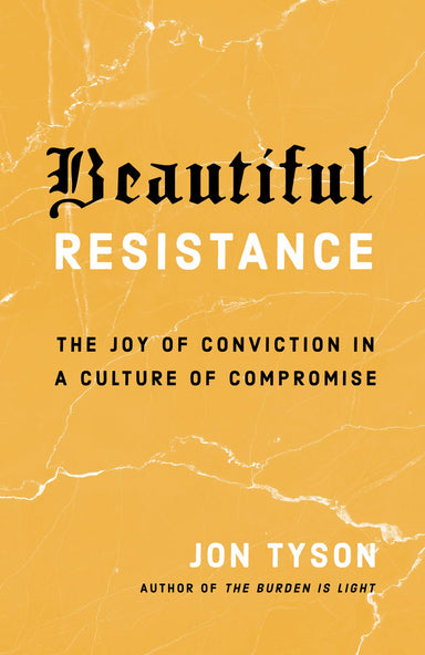 Image of Beautiful Resistance other