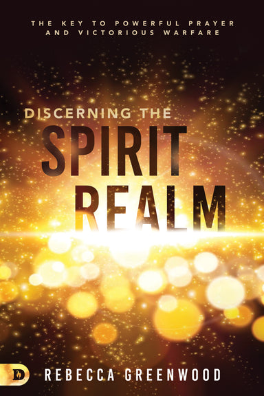 Image of Discerning the Spirit Realm other