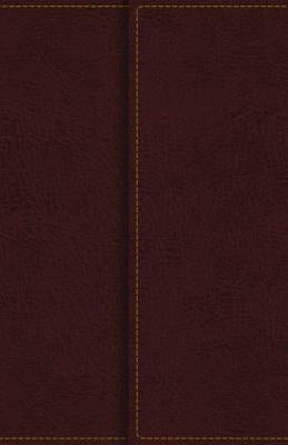 Image of KJV, Reference Bible, Compact, Large Print, Snapflap Leather-Look, Burgundy, Red Letter Edition other