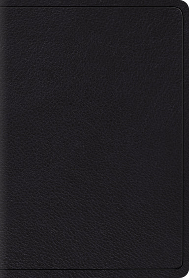 Image of ESV Large Print Compact Bible other