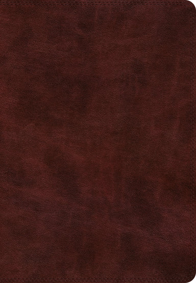 Image of ESV Super Giant Print Bible (TruTone, Burgundy) other