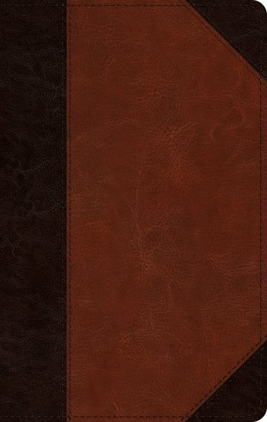 Image of ESV Large Print Personal Size Bible other