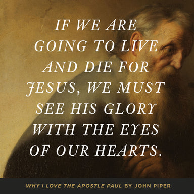 Image of Why I Love the Apostle Paul other