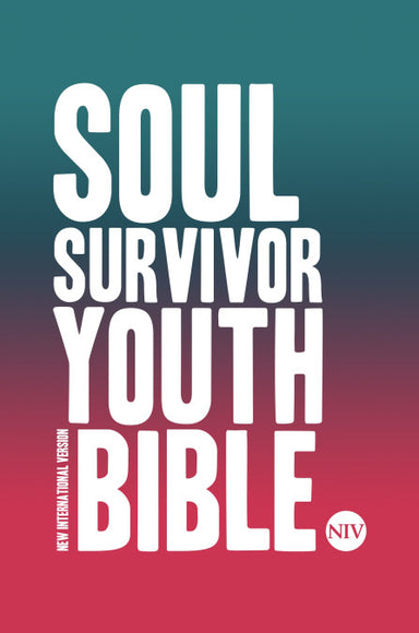 Image of NIV Soul Survivor Youth Bible other