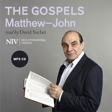 Image of NIV Audio Bible MP3 The Gospels other