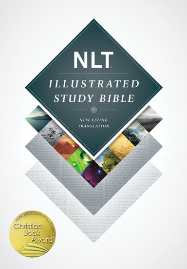 Image of NLT Illustrated Study Bible other