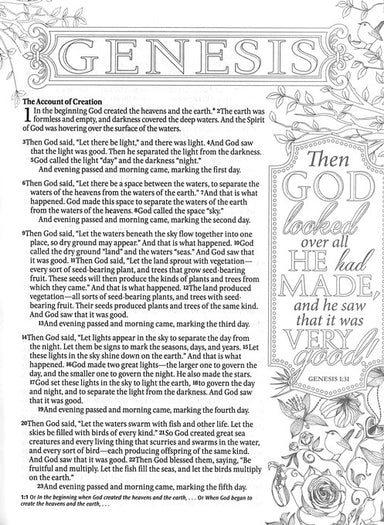 Image of NLT Inspire Colouring and Journaling Bible, Beige, Paperback, Single-Column, Wide-Margin, Colouring Images other