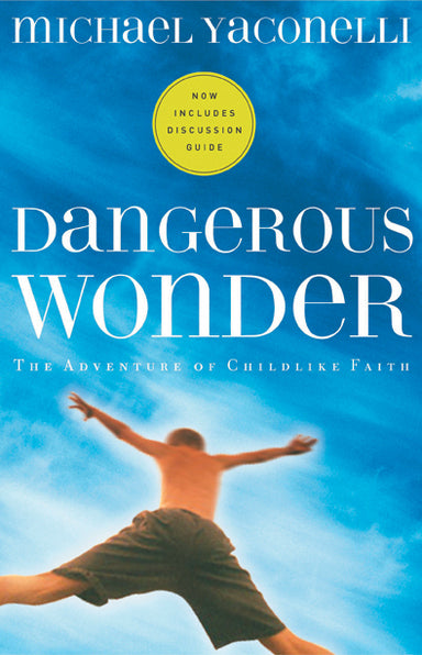 Image of Dangerous Wonder: the Adventure of Childlike Faith other