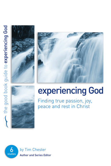 Image of Experiencing God : Finding true passion, peace, joy, and rest in Christ other
