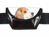 sunglasses case dog food package white & black