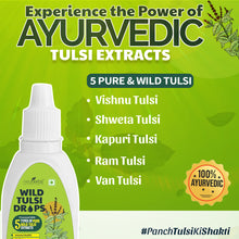Load image into Gallery viewer, Neuherbs Wild Tulsi Drops - Panch Tulsi Drops for Natural Immunity Boosting & Cough and cold Relief : 30 ml