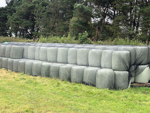 Freshly cut haylage, wrapped in film and stacked in field ready for sale