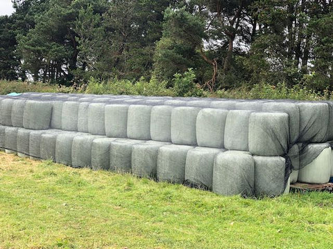 Picture shows small round bales of haylage, sitting in a field of grene grass, wrapped in cylo-tex and protected with a mesh net