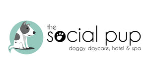 The Social Pup
