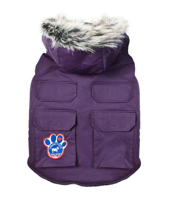 Everest Explorer Jacket by Canada Pooch - Eggplant