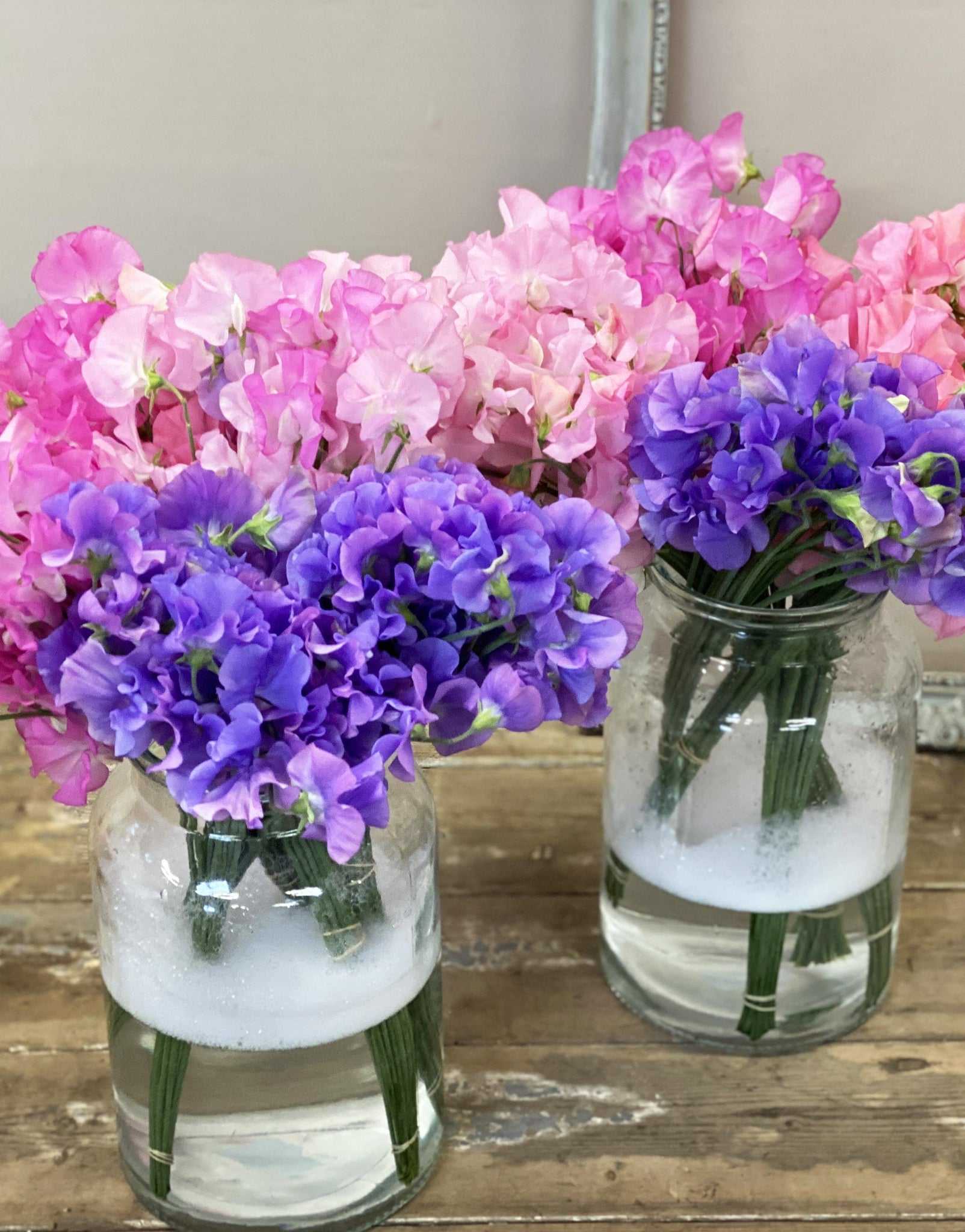 Sweet Peas - Bunches