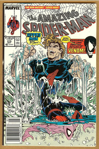 Amazing Spider-Man #315 VF/NM