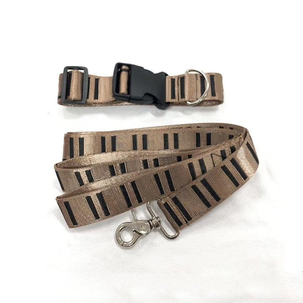 Dog Collar and Leash Set for French Bulldog