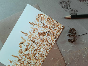 Rustic brown meadow, postcard