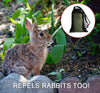 Best Rabbit Repellent
