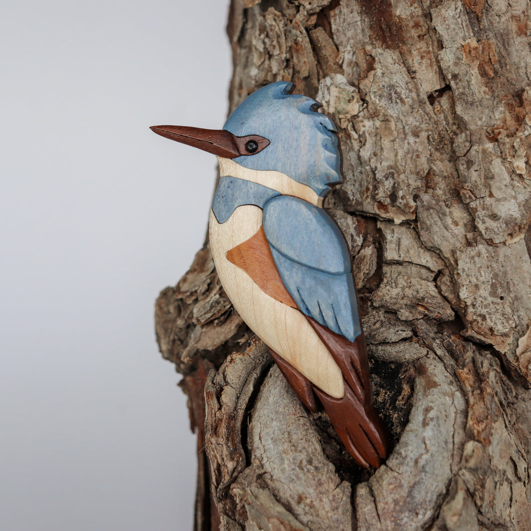 Belted Kingfisher Bird Magnet / Ornament
