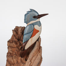 Load image into Gallery viewer, Belted Kingfisher Bird Magnet / Ornament