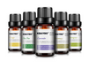 Botanical Essential Oil Set