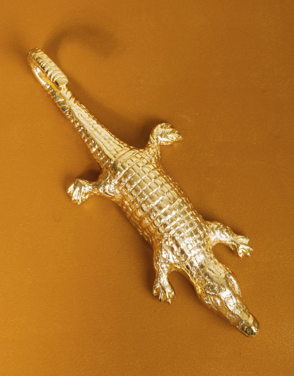 Crocodile wall hook