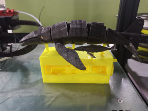 3d printing whale