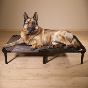 "Lucky Dog 48"" Elevated Pet Bed - 2 Color Choices"