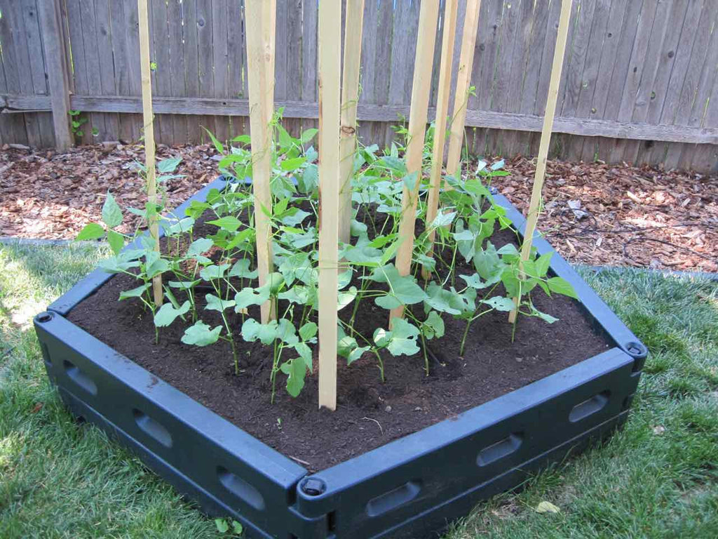 bed raised foot ve garden of square attractive plans able nice vegetable gardening