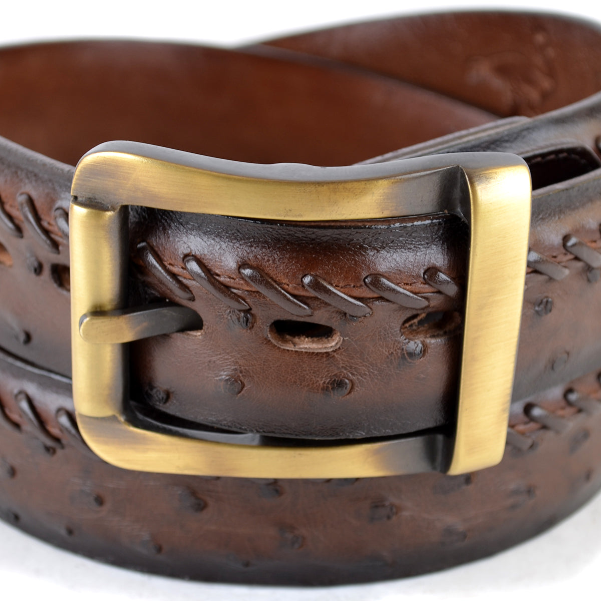 Genuine Ostrich Skin Casual Belt C2303