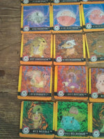 Pokemon premier Edition Artbox Cards