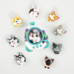 Pet Space Capsule Bluetooth Speaker