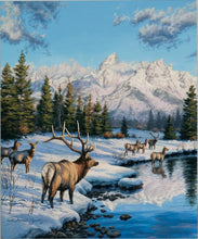 Load image into Gallery viewer, Teton Winter Range