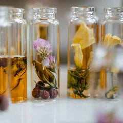 Traditional Perfume Oils Photo by MART PRODUCTION from Pexels