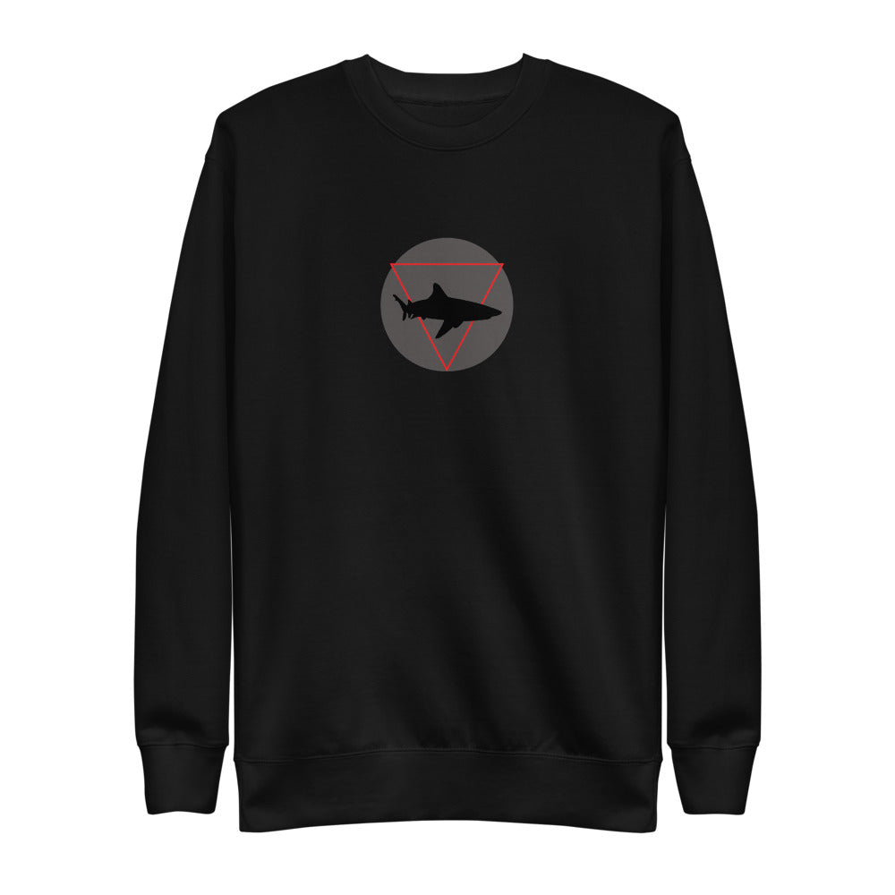 DREAM CHASER Sweatshirt - SOULSKY