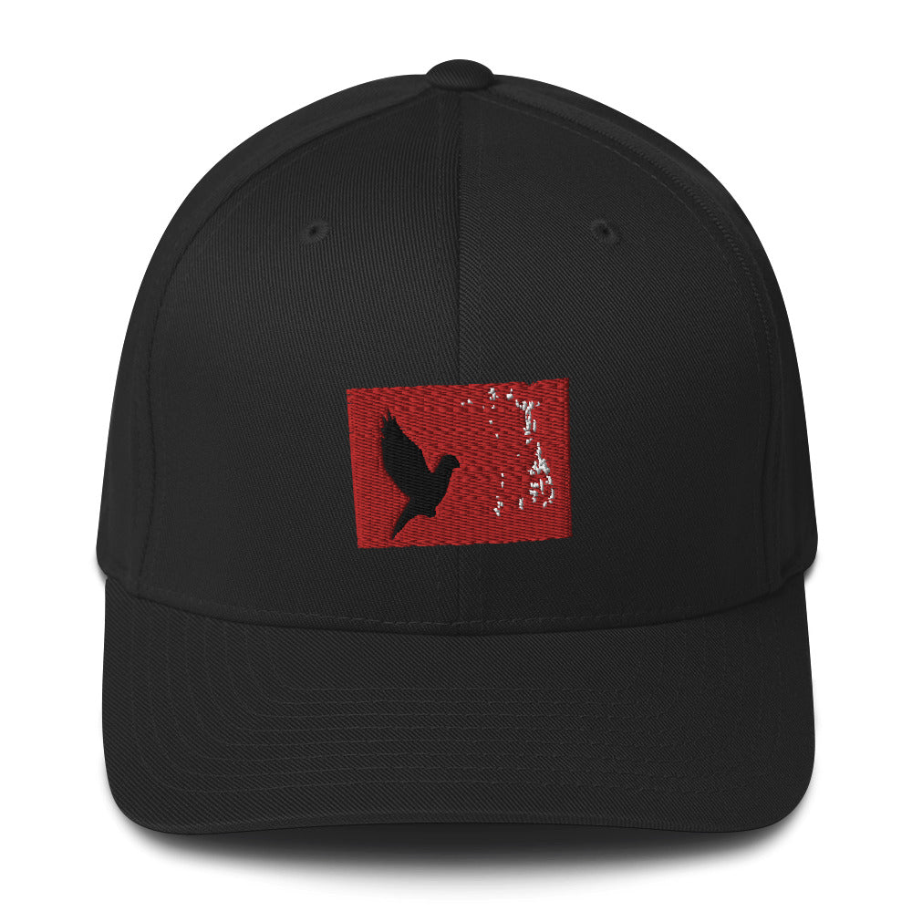TAKE FLIGHT Baseball Cap