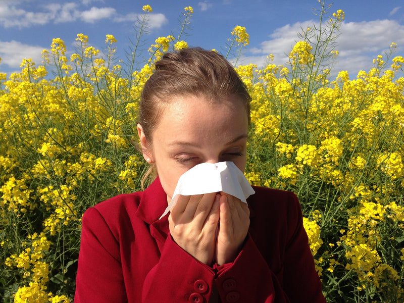 Tame Seasonal Allergies Naturally