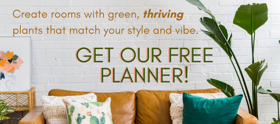 Get our free Living Decor Planner. Image with caramel leather sofa and arching bird of paradise.