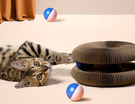 Lepeto interactive deformable cat toy