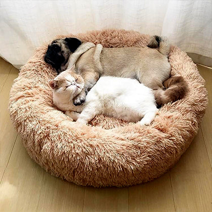 Bed For Pets