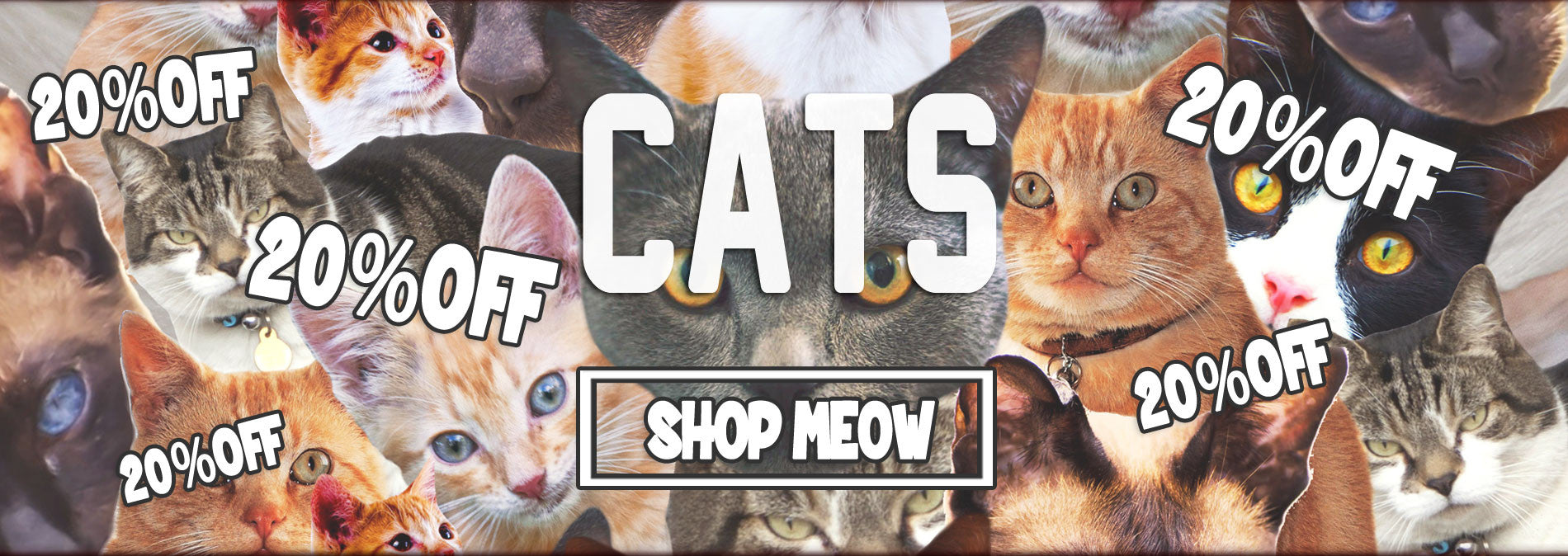 Cat Clothing Kitten Collection