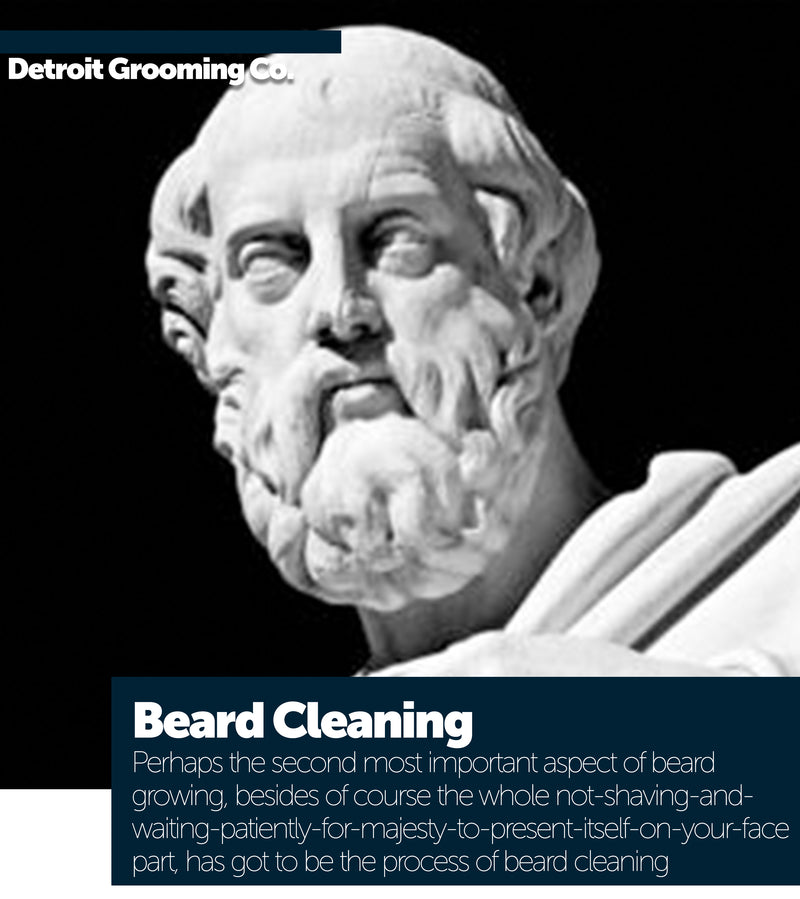 Beard Cleaning
