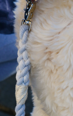 The Ultimate Nautical Leash with Nickel Clasp